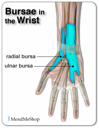 Bursae in the Wrist and Bursa Pain